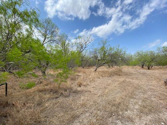 0 Private Road 2006, Kingsville, TX 78363 (MLS #381091) :: South Coast Real Estate, LLC
