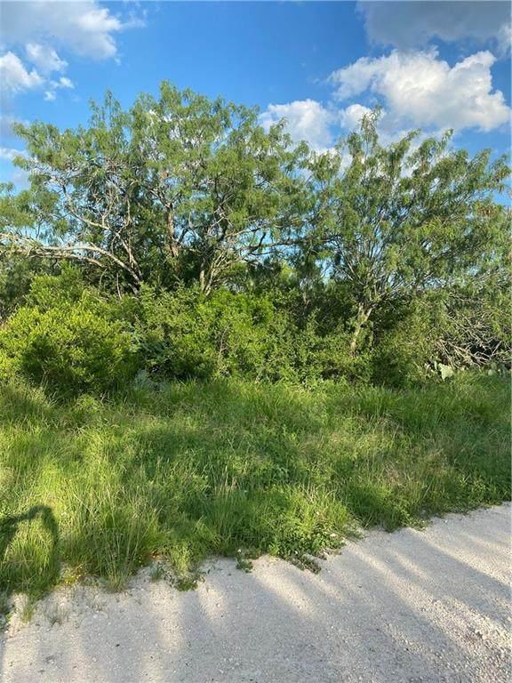 000 County Road 3084, Orange Grove, TX 78372 (MLS #384815) :: KM Premier Real Estate
