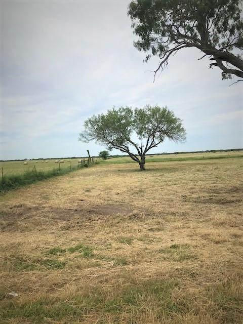 00 County Road 137 Circle - Photo 1