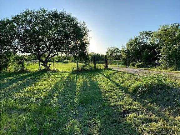 398 E Sullivan St, Skidmore, TX 78389 (MLS #388652) :: RE/MAX Elite Corpus Christi
