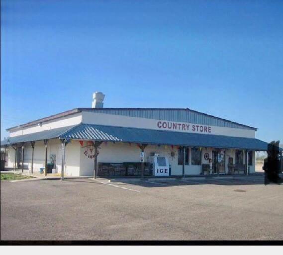455 Highway 281, George West, TX 78022 (MLS #389629) :: RE/MAX Elite   The KB Team