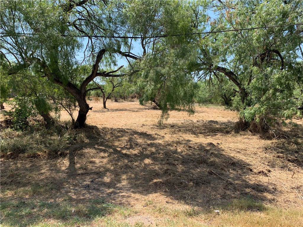 0 Guadalupe- .39 Acre Lot Street - Photo 1