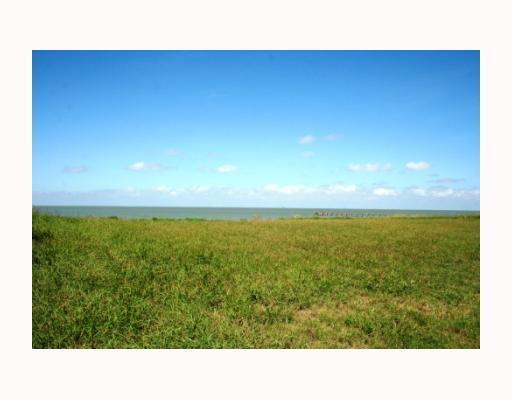4402 Ocean Dr, Corpus Christi, TX 78412 (MLS #165840) :: Desi Laurel & Associates