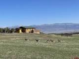 37569 Fruitland Mesa Road - Photo 2