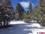 TBD S. Badger Trail-Lot 423 - Photo 8
