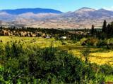 tbd Shaw Creek Ranch Road - Photo 1