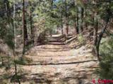 95 Mark Trail - Photo 1