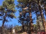 31052 Oak Mesa Road - Photo 16