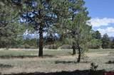 558 Badger Trail - Photo 3