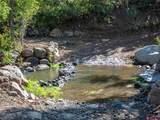 21267 Ward Creek Road - Photo 30
