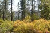 1133 Edgemont Highlands Drive - Photo 1