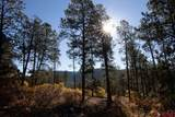 884 Red Canyon Trail - Photo 3