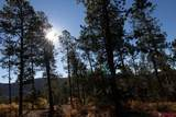 848 Red Canyon Trail - Photo 6