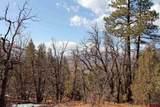 TBD Elkhorn Mountain Road - Photo 12