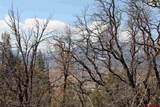 TBD Elkhorn Mountain Road - Photo 13