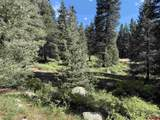 331 Wilderness Drive - Photo 12