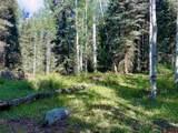 331 Wilderness Drive - Photo 3