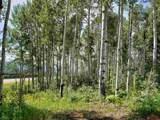 81 Scotch Creek Drive - Photo 1