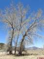 TBD Us Highway 550 - Photo 18