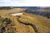 tbd Dove Creek Road - Photo 1