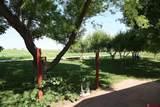 3946 Old Wagon Road - Photo 27