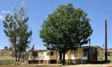5283 County Road 213 - Photo 1