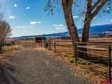 11309 Running Deer Road - Photo 35