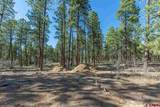 1096 Red Canyon Trail - Photo 3