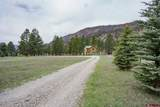 11019 County Road 250 - Photo 29