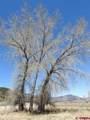 TBD Us Highway 550 - Photo 20