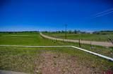 2948 County Road 514 - Photo 22