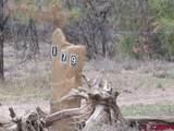207,179,151 Gun Barrel Road - Photo 14