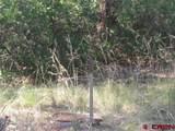 207,179,151 Gun Barrel Road - Photo 17