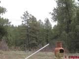 207,179,151 Gun Barrel Road - Photo 21