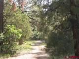 207,179,151 Gun Barrel Road - Photo 27