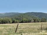 20122 2375 Road - Photo 3