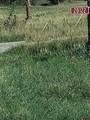 20122 2375 Road - Photo 4