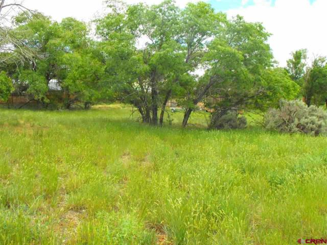 1082 Mildred, Cortez, CO 81321 (MLS #713714) :: CapRock Real Estate, LLC