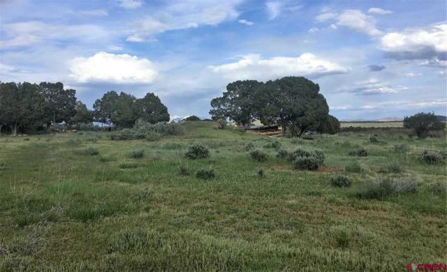 13410 Road 33, Mancos, CO 81328 (MLS #718958) :: The Dawn Howe Group   Keller Williams Colorado West Realty