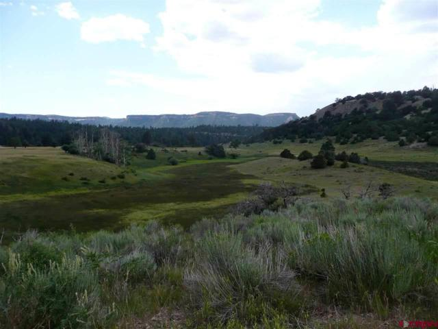 LOT 10 Lone Cone Ranches Road, Dolores, CO 81323 (MLS #720291) :: Durango Home Sales