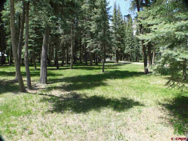 1000 Mushroom Lane, Vallecito Lake/Bayfield, CO 81122 (MLS #720692) :: Durango Home Sales