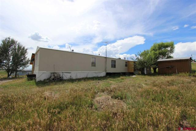 51 & 81 Pleasant View Road, Ignacio, CO 81137 (MLS #723200) :: Durango Home Sales