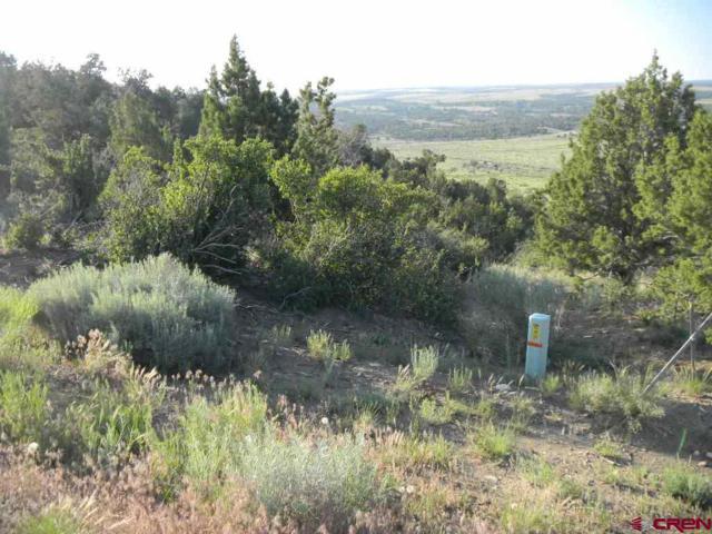 24251 Road V.4, Dolores, CO 81323 (MLS #723215) :: Durango Home Sales