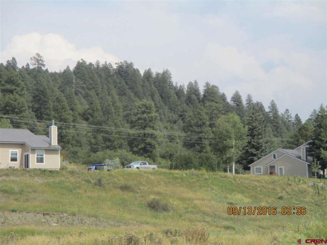 5584 County Rd 600 #106-109, Pagosa Springs, CO 81147 (MLS #725206) :: Durango Home Sales