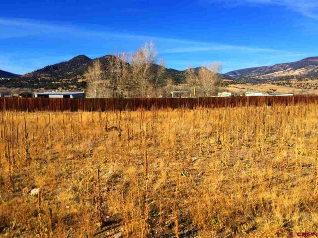 0103 Sawmill Street, South Fork, CO 81154 (MLS #726110) :: Durango Home Sales