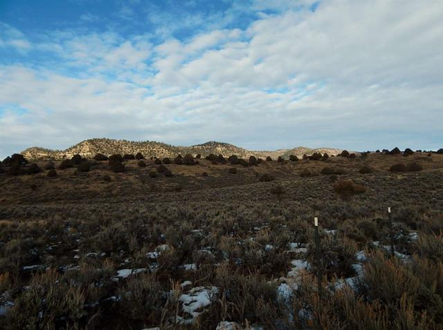 6000 County Road 542, Pagosa Springs, CO 81147 (MLS #727087) :: CapRock Real Estate, LLC