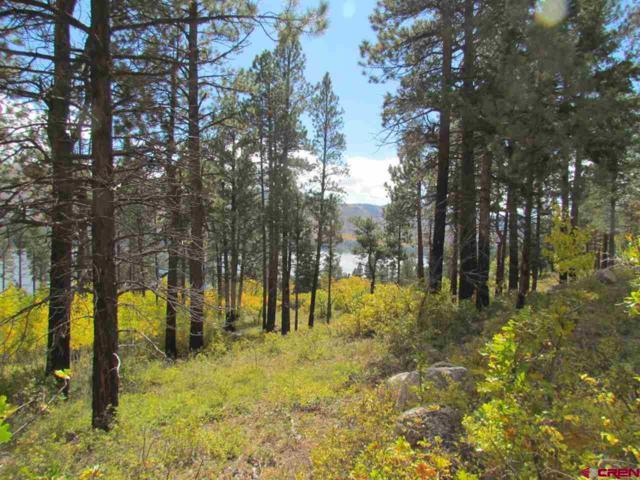 Lot 11 Lake View Drive, Vallecito Lake/Bayfield, CO 81122 (MLS #727227) :: Durango Home Sales