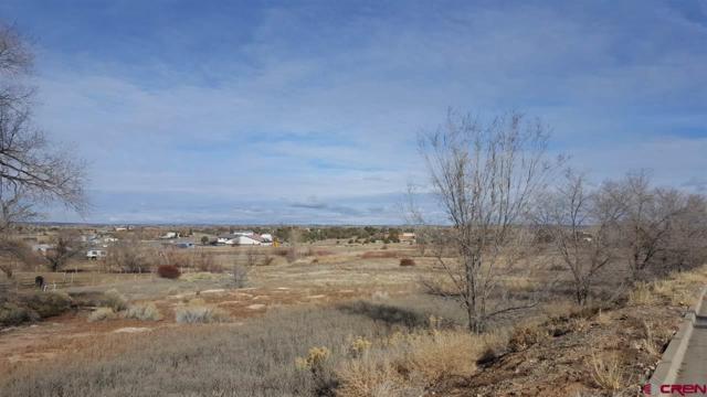 2510/2606 Fairway, Cortez, CO 81321 (MLS #727733) :: CapRock Real Estate, LLC