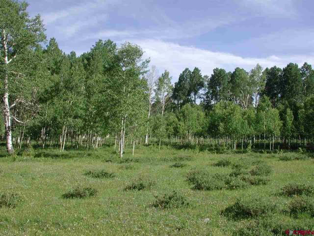 tbd Elk Drive, Montrose, CO 81403 (MLS #728560) :: Durango Home Sales
