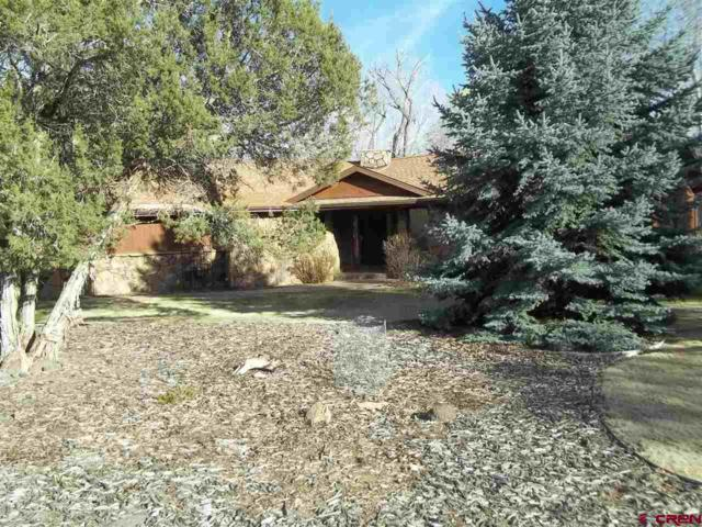 1535 SE 3Rd. Street, Cedaredge, CO 81413 (MLS #730298) :: CapRock Real Estate, LLC